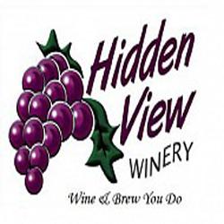 hidden_view